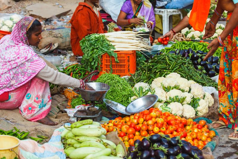 Grocery market india royalty free stock images