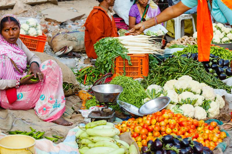 Grocery market india royalty free stock photography