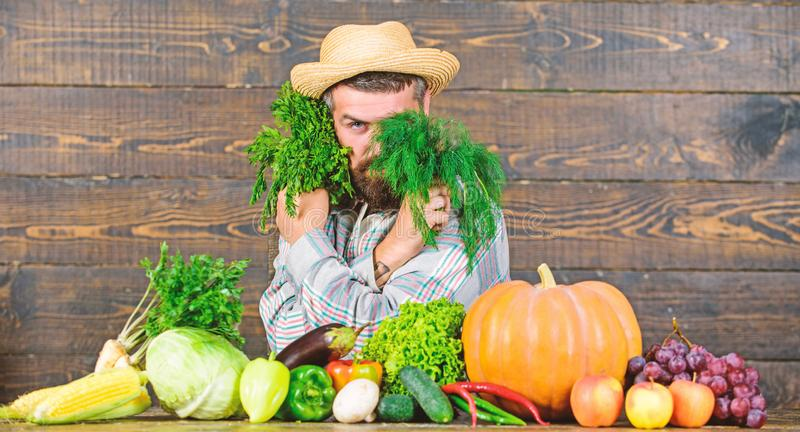 Grocery shop concept. Buy fresh homegrown vegetables. Excellent quality vegetables. Man with beard proud of his harvest stock image