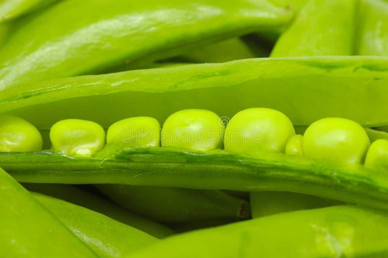 Download Groch zdjęcie stock. Obraz złożonej z warzywo, natura, składnik - 134470