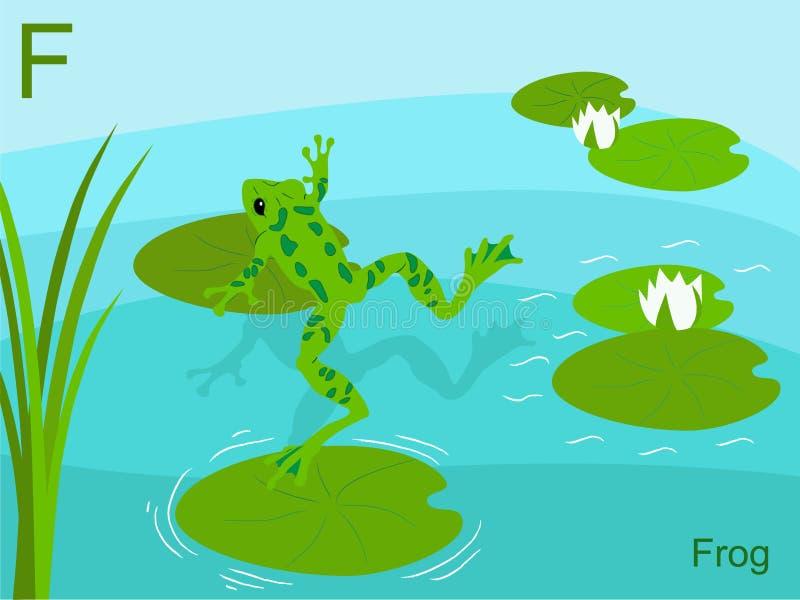 groda för exponering för kort f för alfabet djur royaltyfri illustrationer