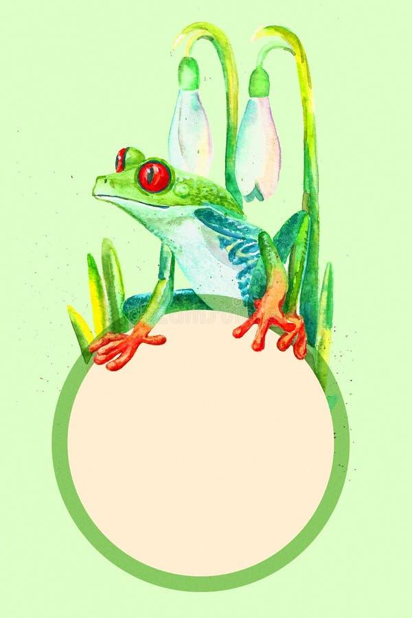 Groda för träd för vattenfärg för räkningsmall rödögd och krokusar, vårkopia-utrymme illustration vektor illustrationer