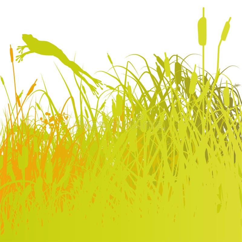 Groda och vasser på dammet stock illustrationer