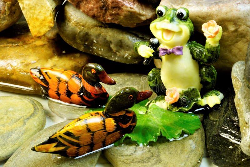 Grodan som sjunger på, vaggar i dammet, en konsert och en festmåltid för änderna arkivfoton