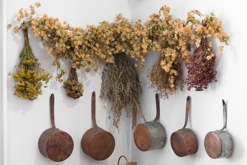 Grodno, Belarus - 5 avril 2017 : groupes d'herbes curatives dans le musée de pharmacie de Grodno photo libre de droits