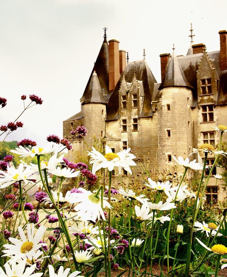 grodowa langeais Loire dolina fotografia royalty free