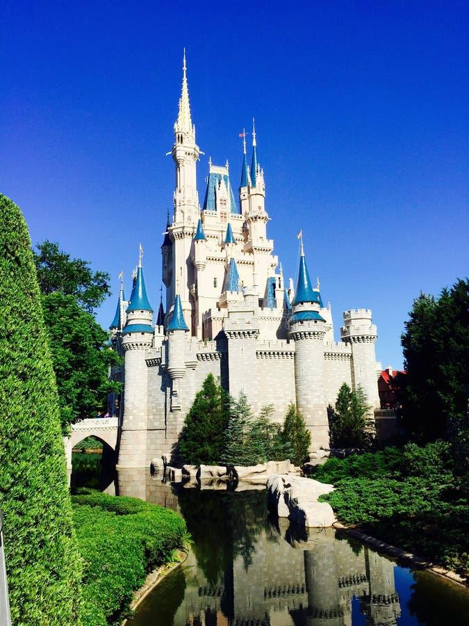 grodowy Cinderella s zdjęcie royalty free