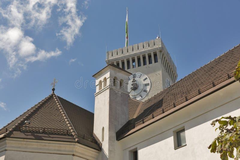 grodowy Ljubljana Slovenia obrazy royalty free