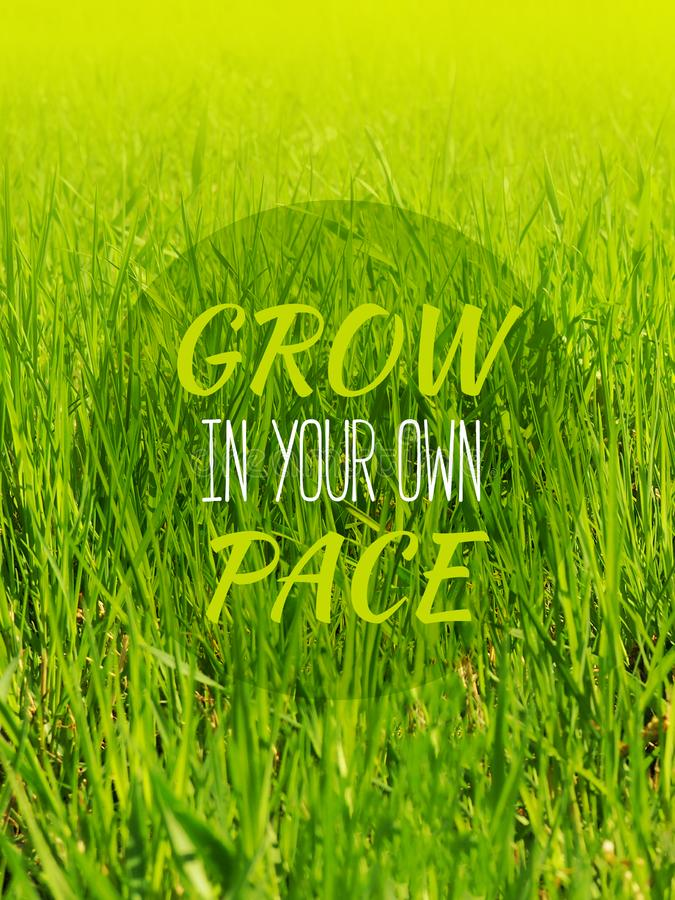 Groei in uw eigen tempo - inspirerende motivatie citaat stock fotografie