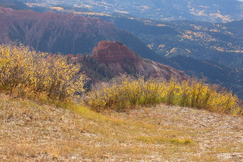 Groeien het de de herfst gele struiken en gras op de rand die van een rand de rode rotsvormingen van het Zuidelijke hoge land van royalty-vrije stock afbeeldingen