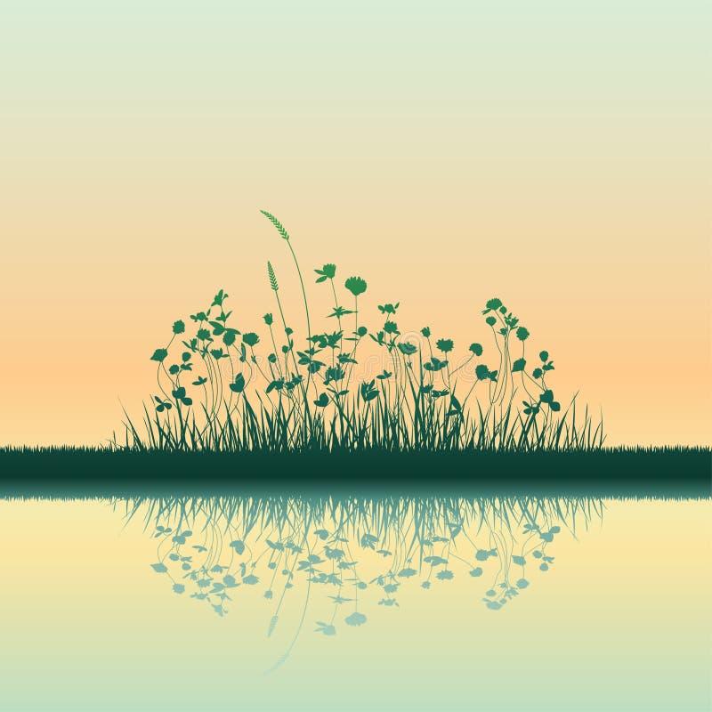 Groeiend gras vector illustratie