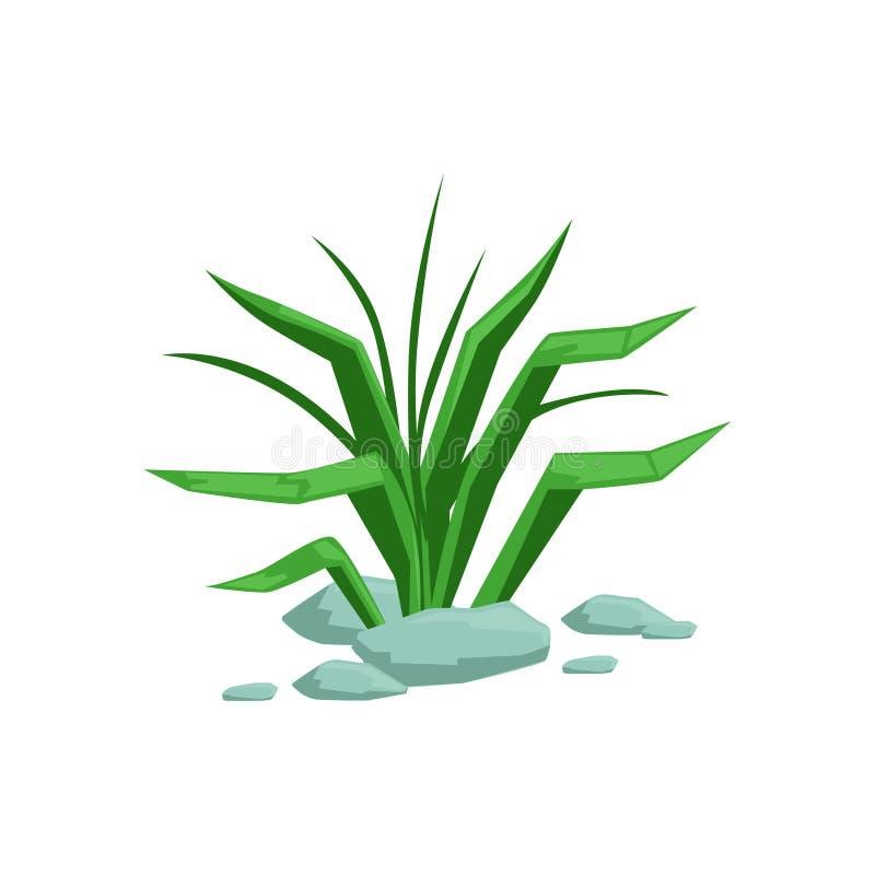 Groeiend het Ontwerpelement van het Gras Natuurlijk Landschap, een Deel van Landschap in Aard Modellerende Aannemer royalty-vrije illustratie