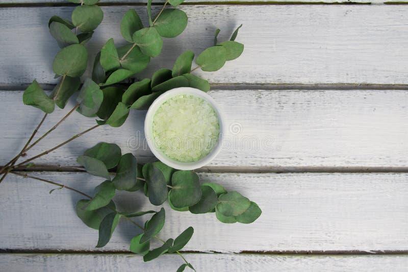Groen badzout met verse eucalyptusbladeren royalty-vrije stock fotografie
