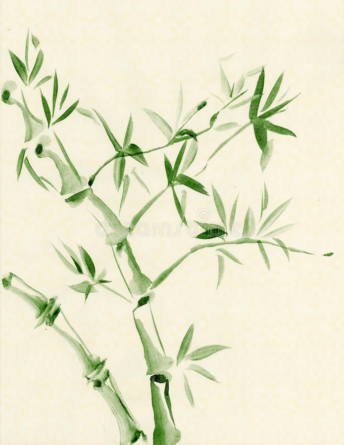 Groen Bamboe royalty-vrije illustratie