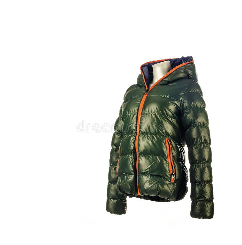 Groen Beneden de Winterjasje, Zijaanzicht royalty-vrije stock foto's