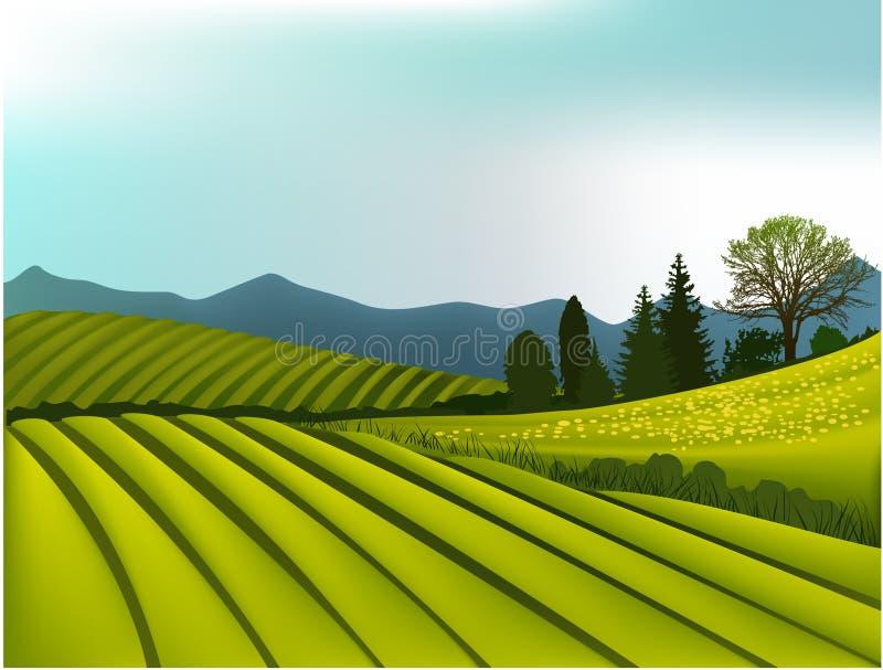 Groen berglandschap royalty-vrije illustratie