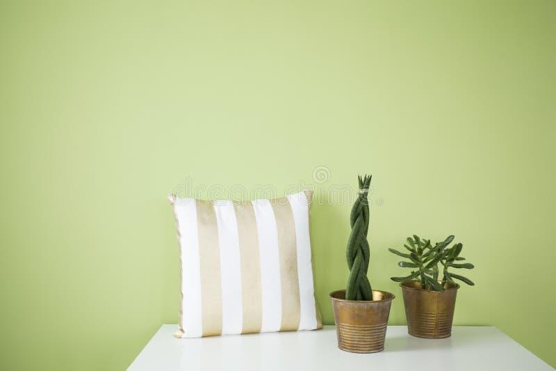 Groen binnenland met decoratief hoofdkussen stock afbeeldingen