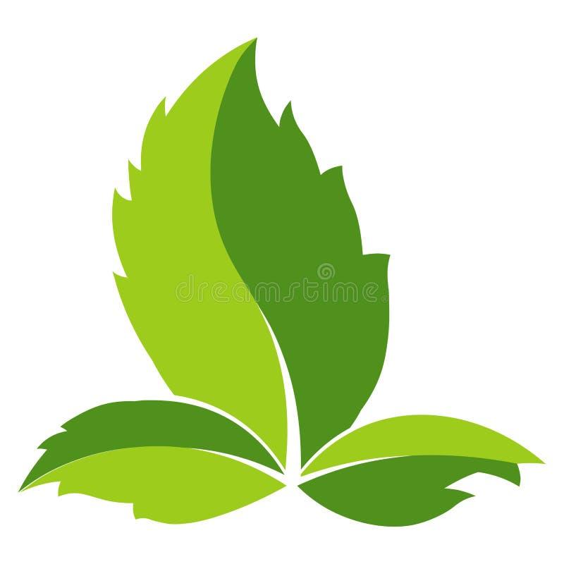 Groen Blad Logo Template Vectorpictogram van blad voor van de ecomilieu of aard ecologie en groene energie stock illustratie