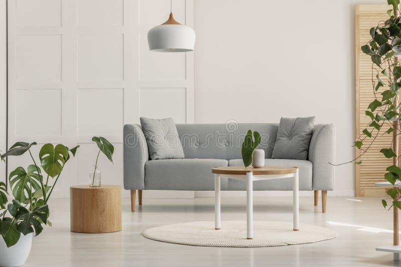 Groen blad in witte vaas op ronde houten koffietafel in modieuze woonkamer met grijze Skandinavische bank royalty-vrije stock afbeeldingen