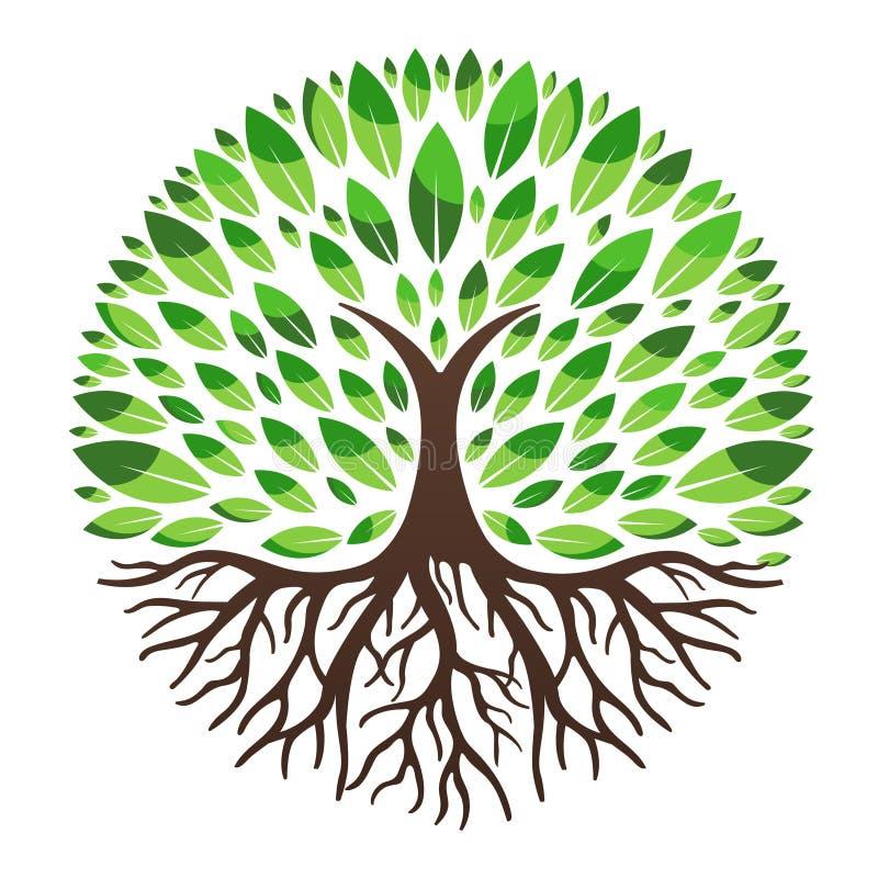 Groen boomembleem royalty-vrije stock afbeeldingen