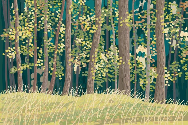 Groen bos vector illustratie