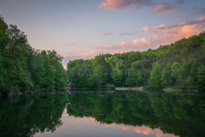 Groen bos, een meer en een zonsonderganghemel met roze wolken stock foto's