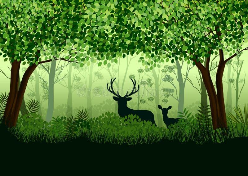 Groen bos met wilde elanden in bos royalty-vrije illustratie