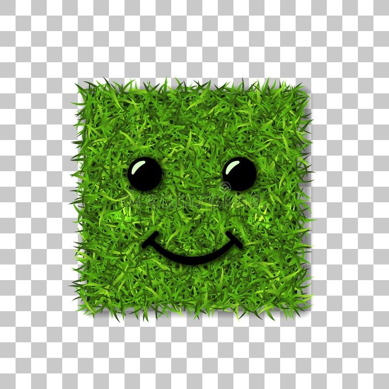 Groen 3D gras vierkant gebied Gezichtsglimlach Smiley grasrijk pictogram, geïsoleerde witte transparante achtergrond Het concept  vector illustratie