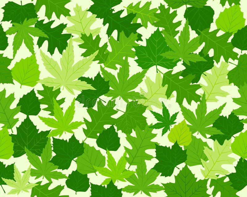 Groen de textuur naadloos patroon van de lentebladeren vector illustratie