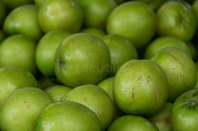 Groen die de appelfruit van Azië in deel 2 wordt gekweekt van keerkringen stock fotografie