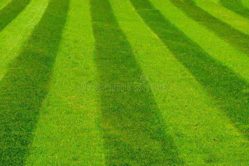 Groen die grasgazon in een gestreept patroon, decoratief graspatroon, het tuinieren en tuinonderhoud wordt gemaaid royalty-vrije stock foto's