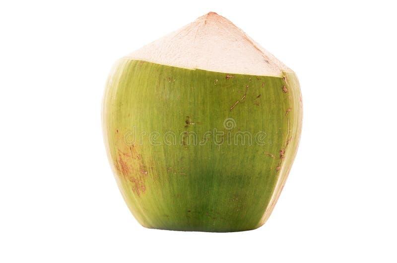 Groen die kokosnotenfruit op witte achtergrond wordt geïsoleerd royalty-vrije stock afbeeldingen