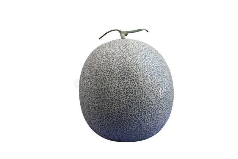 Groen die meloenfruit op witte achtergrond met het knippen van weg wordt geïsoleerd stock fotografie