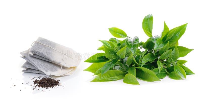 Groen die theeblad en theezakje op witte achtergrond wordt geïsoleerd stock afbeeldingen