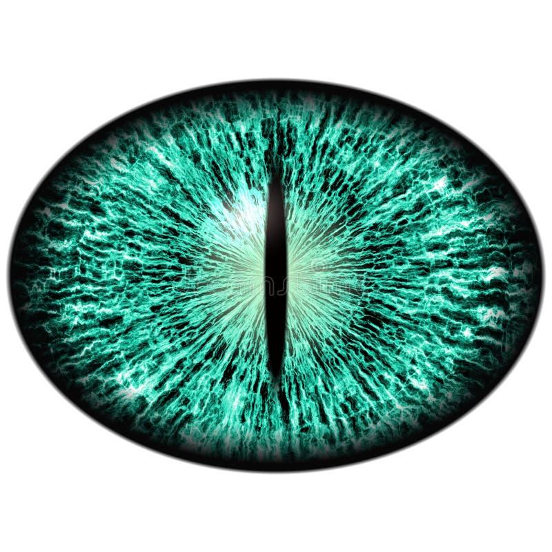 Groen dierlijk oog met grote leerling en heldere retina op achtergrond Donkergroene iris royalty-vrije illustratie