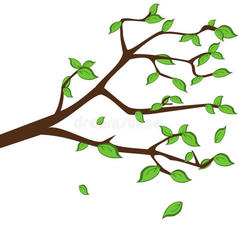 Groen doorbladert stock illustratie