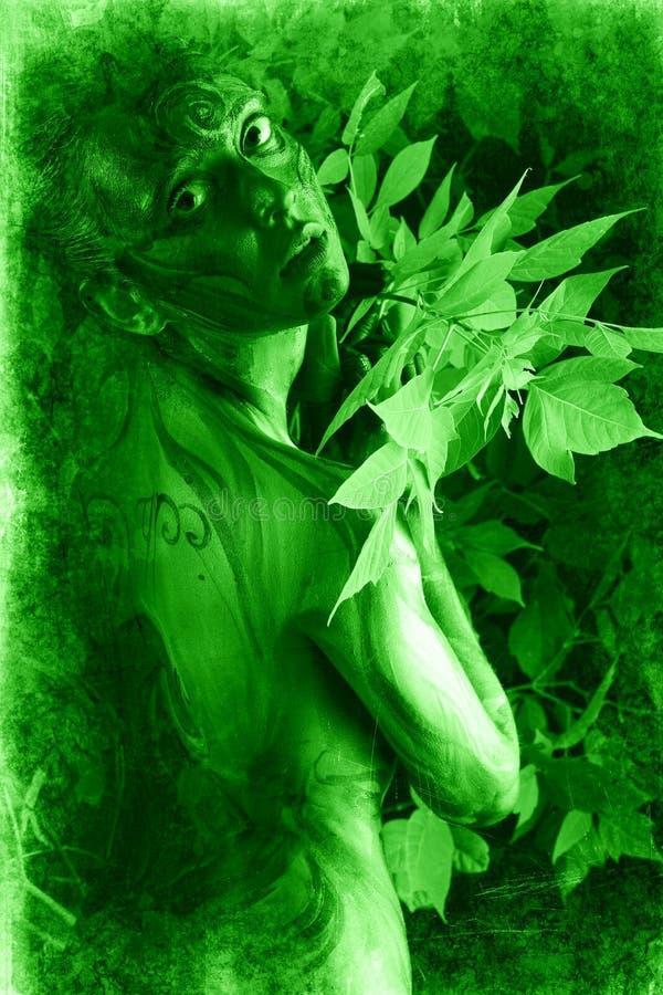 Groen doorbladert stock afbeeldingen