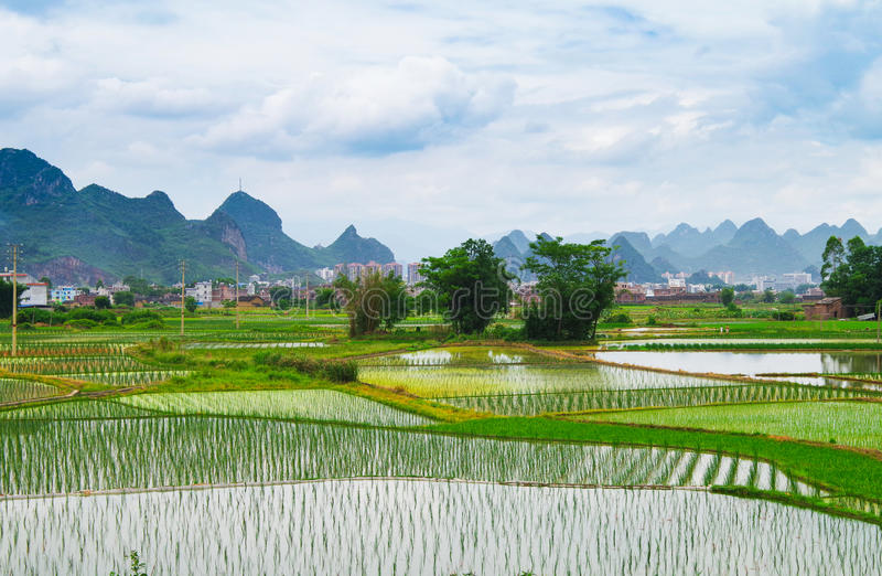Groen Dorp in China stock foto