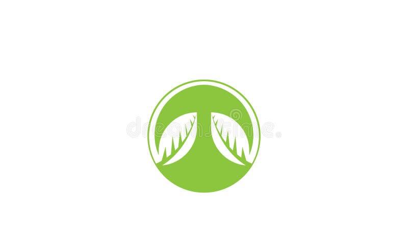 Groen Ecologieblad Logo Template - Groene Verse de Natuurvoeding Natuurlijke Gezondheidszorg van Gezondheidseco Logotype stock illustratie