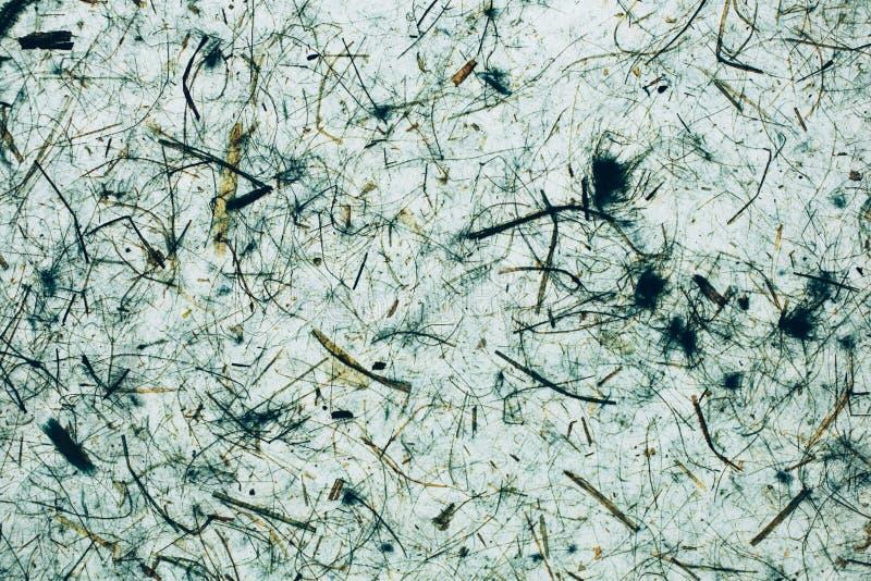 Groen een blauwe abstracte textuur en een achtergrond Natuurlijke en organische achtergrond stock afbeeldingen