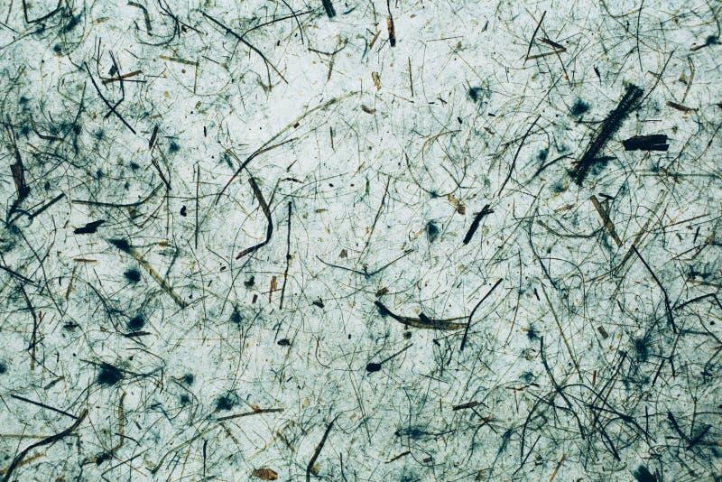 Groen een blauwe abstracte textuur en een achtergrond Natuurlijke en organische achtergrond stock foto's
