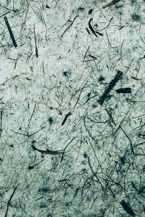 Groen een blauwe abstracte textuur en een achtergrond Natuurlijke en organische achtergrond royalty-vrije stock afbeeldingen