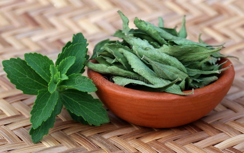Groen en dired Stevia-bladeren royalty-vrije stock afbeelding