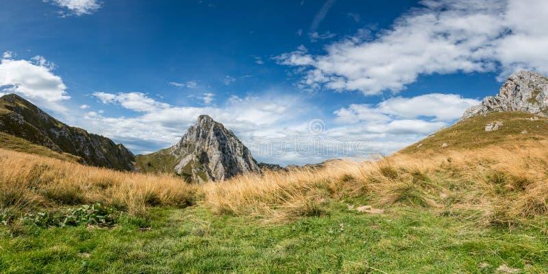 Groen en droog gras op bergweide royalty-vrije stock foto's