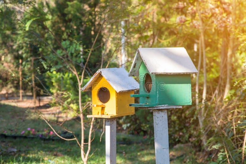Groen en Geel houten vogelhuis op post in de tuin op de zomer of de lentezonneschijn met natuurlijke groene bladerenachtergrond stock afbeelding