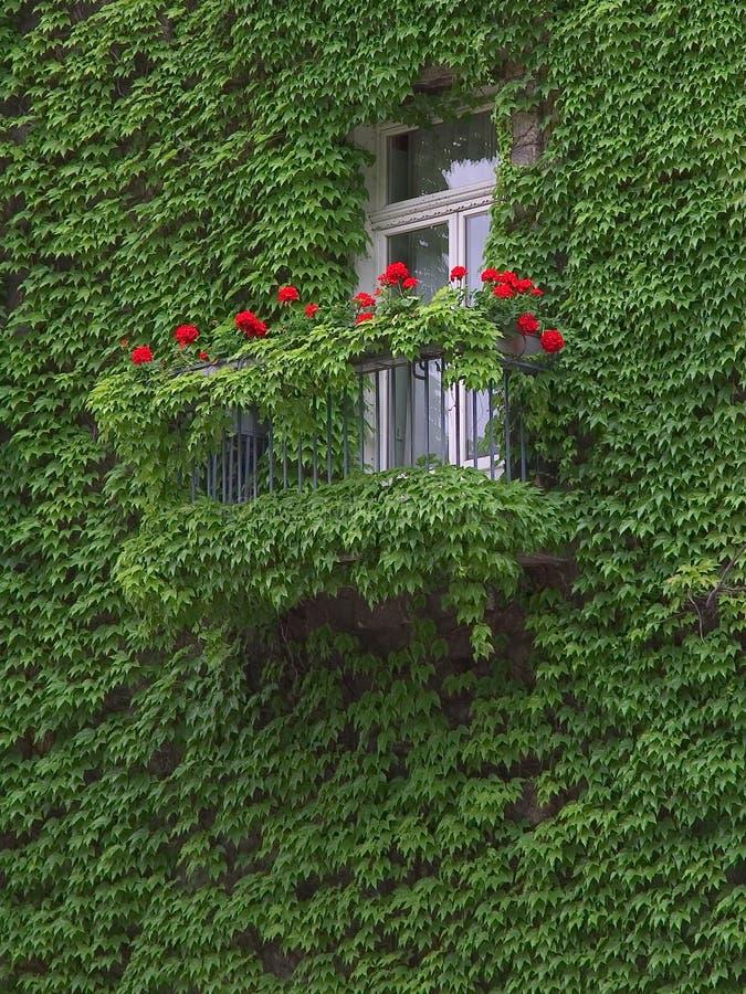 Groen en rood balkon royalty-vrije stock afbeeldingen