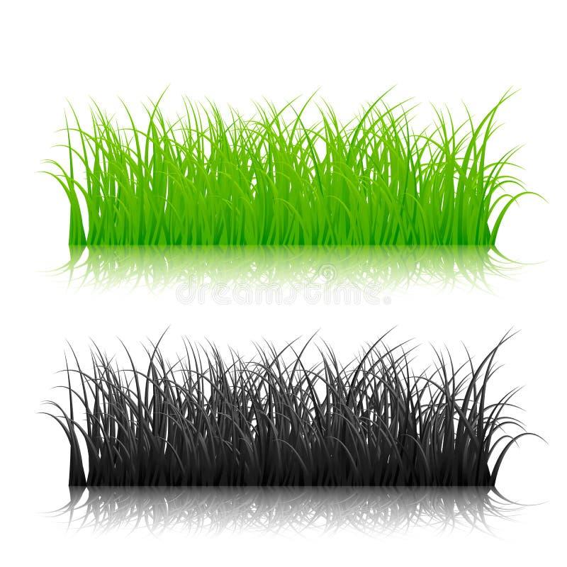 Groen en zwart die silhouetgras op witte achtergrond wordt geïsoleerd Vector illustratie royalty-vrije illustratie
