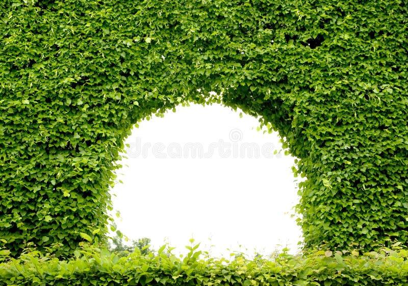 Groen frame royalty-vrije stock foto