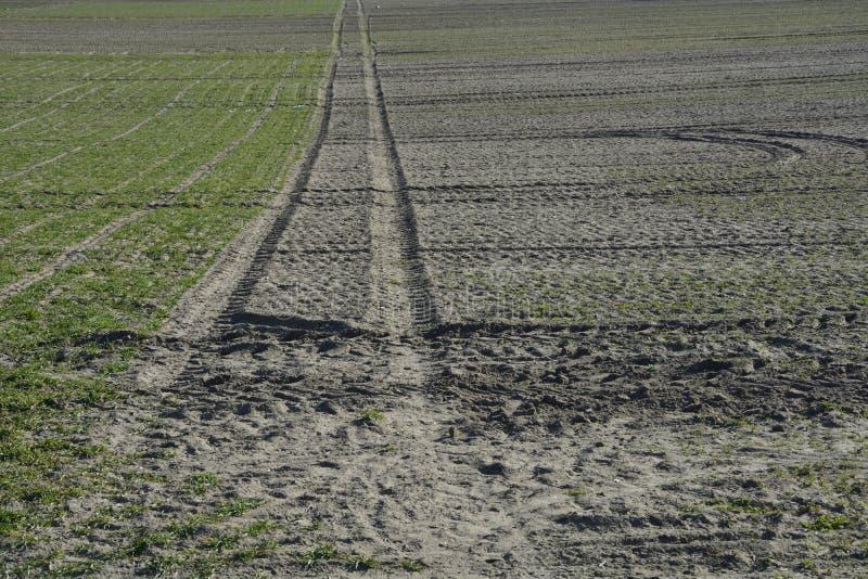 Download Groen gebied stock foto. Afbeelding bestaande uit tractor - 39111998