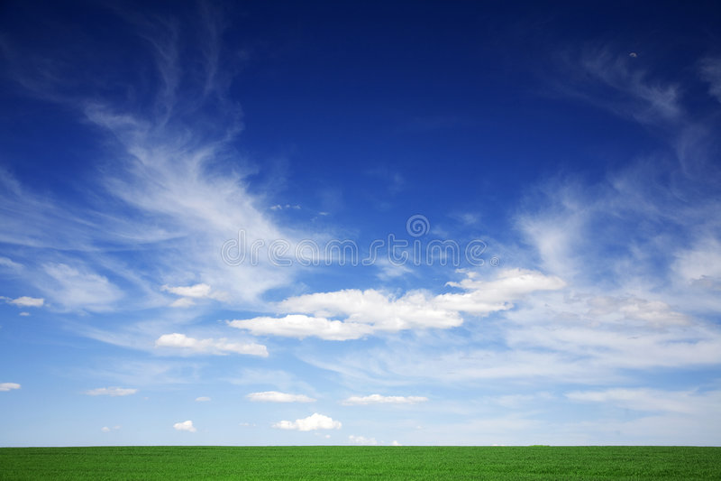 Groen gebied, blauwe hemelen, witte wolken in de lente royalty-vrije stock foto's